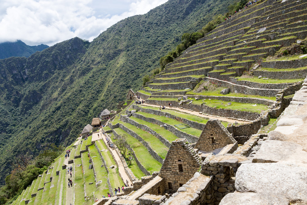 Terrace in Machu Picchu